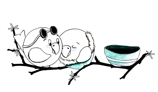 Ein zärtlich verliebtes Vogelpaar im Frühling schmiegt sich glücklich aneinander – ein wunderbarer Zaubermoment zum Aufbewahren – nicht nur für Vogelpaare.